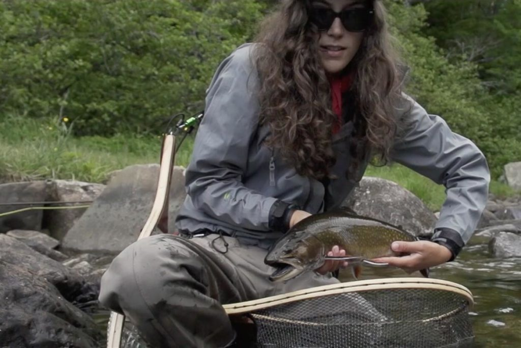Brook Trouts